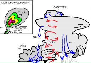 Schemat organizacji prądów wstępujących (kolor czerwony) i zstępujących (kolor niebieski) w superkomórce burzowej