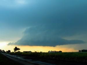 Chmura stropowa (fot. Łukasz Pajurek)