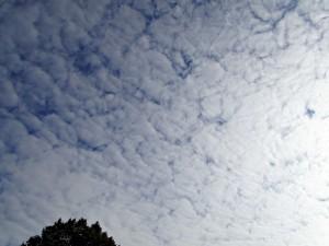 Chmura stratocumulus stratiformis jest typowym przedstawicielem chmur kłębiasto-warstwowych (fot. Jan Jakóbczak)