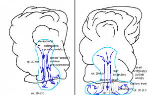 Obrazek ilustrujący mechanizm powstawania zjawiska downburst (autor: Artur Surowiecki)