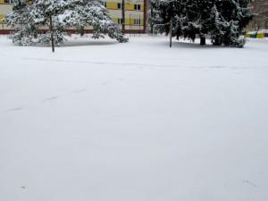 Zima w Zielonce koło Warszawy (fot. Grzegorz Zawiślak)