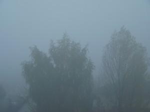 Mgła adwekcyjna (fot. Igor Laskowski)