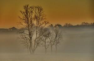 Mgła fot. Łukasz Moskwa
