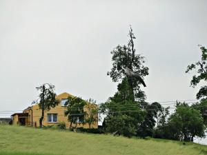 Skutki przejścia trąby powietrznej. Fot. Jan Jakóbczak (PŁB)