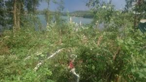 Szkody spowodowane przez trąbę powietrzną w rejonie Kretowin. Fot. Anna Łukasz Zawieska